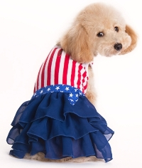DOGO Design - American Girl Dress - USA Red, White, and Blue!  Good old American flag design with added spice.  Detailed star belt with bow and multi-layered ruffled navy blue skirt.  Leash hole.