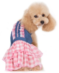 DOGO Design - Denim Chic Dress - Denim bodice embellished with ruffled checker trim, with a two-tiered checker skirt.